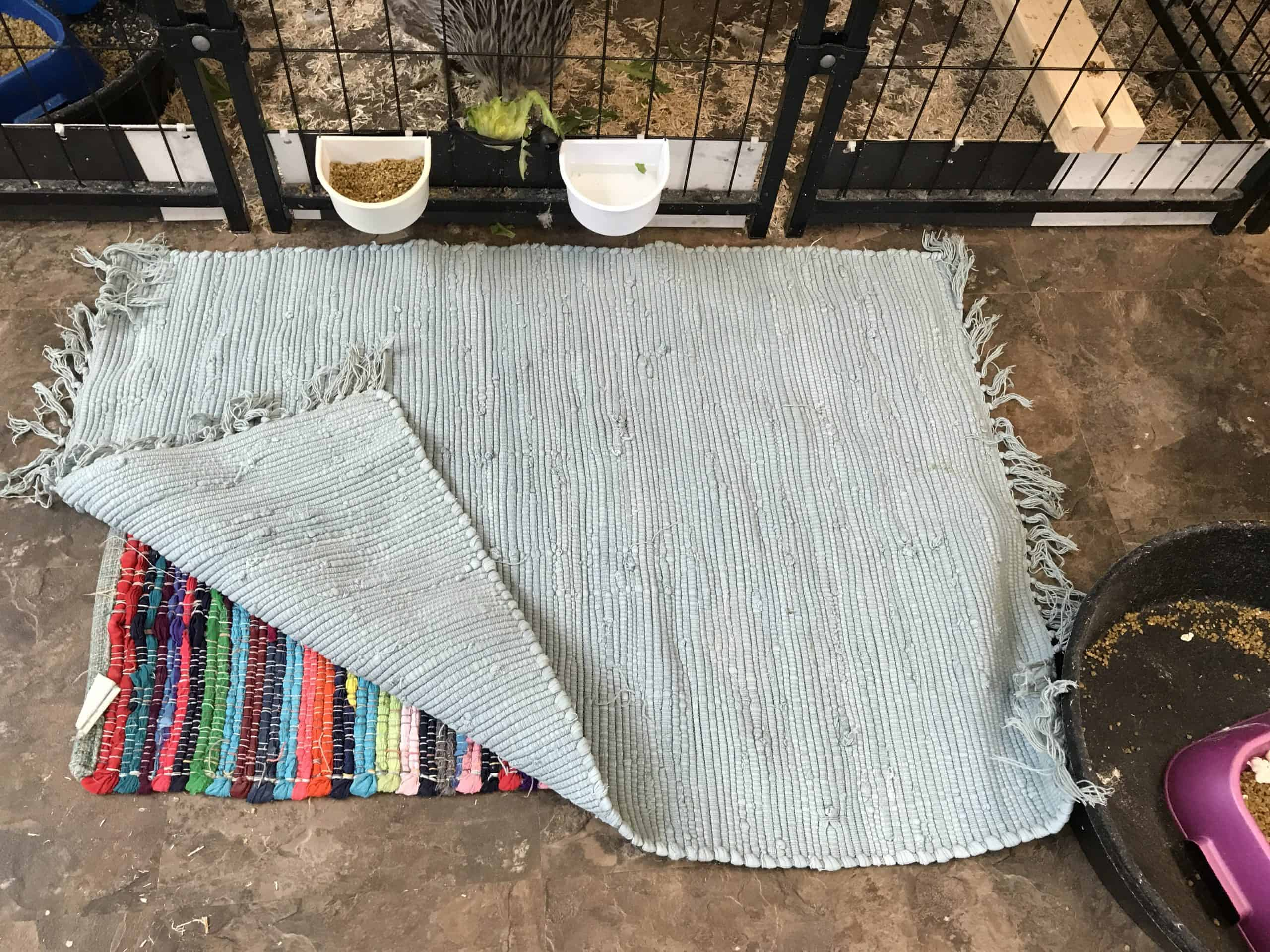 The corner of a rag rug is lifted up to reveal another rag rug underneath it. Two food and water hook-on dishes are secured to the outside of a modular pen.