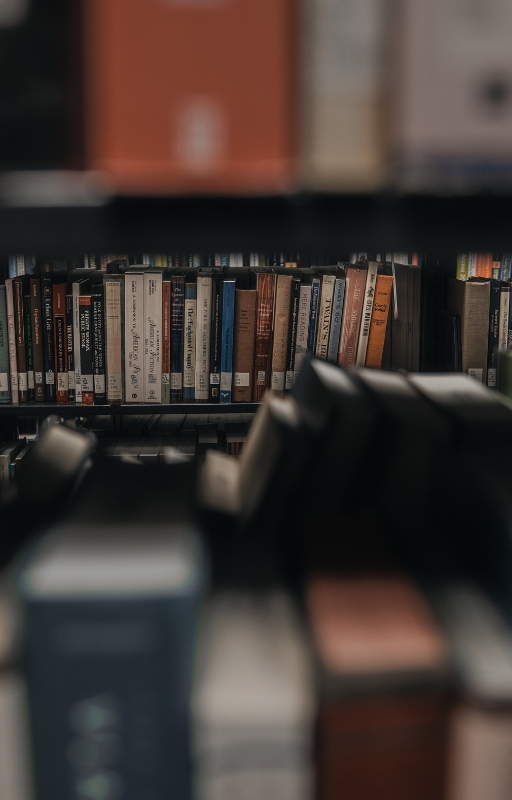 a set of books arranged horizontally