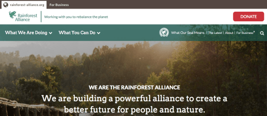 Homepage of Rainforest Alliance website with an image of a forest in the background and an icon representing frog at top-left