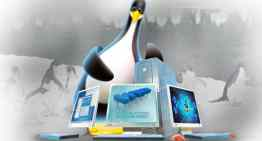 What Makes Linux the Preferred Web Hosting Choice?