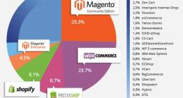 Ecommerce Store on Magento Platform Needs Security and Protection