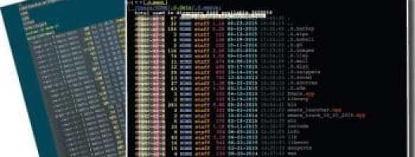 Screen visual