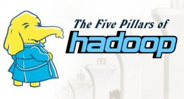 The Five Pillars of Hadoop