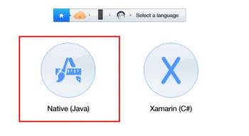 Figure 11: Select a language