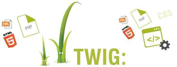 Twig Visual