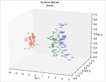 Figure 10 Scores 3D