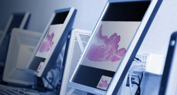 Zeiss set to build open source file reader for whole slide imaging