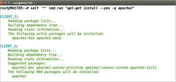 Figure 6 Installing Apache2 in all the Minions