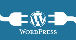 How to clean up your WordPress website