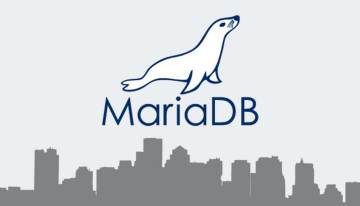 Get the Best Out of MariaDB with Performance Tuning