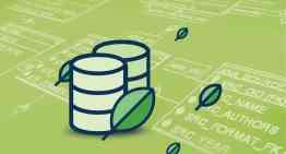 Using MongoDB to improve IT performance of enterprises
