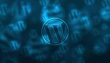 What Makes WordPress The Ideal Choice for Your Website and Optimization Needs?