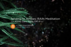 Tending To Arrows: RAIN Meditation