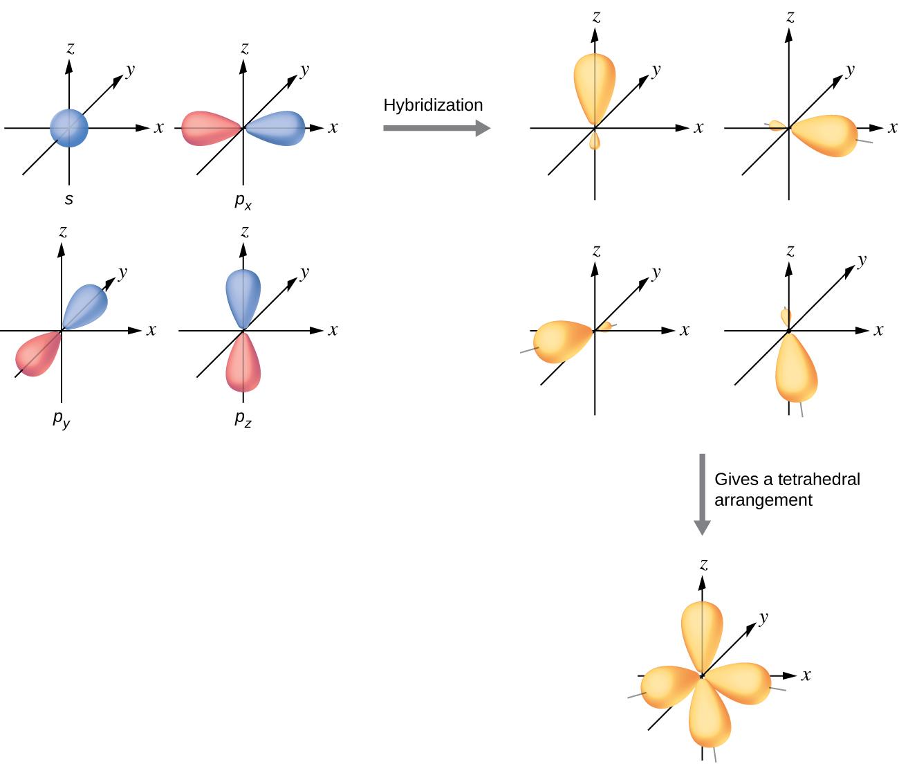 8 2 Hybrid Atomic Orbitals Chemistry