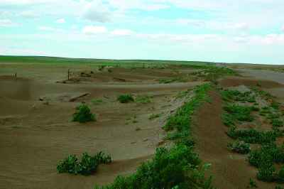 Photograph of Soil erosion by wind in Alberta.