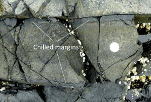 Figura 3.22 Un dique mafic con márgenes refrigerados dentro de basalto en Nanoose, BC La moneda es de 24 mm de diámetro. El dique es de unos 25 cm de ancho y los márgenes refrigerados son 2 cm de ancho.