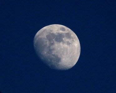 La Luna (Karen Molenaar Terrell)