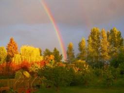 Blooming Rainbow (Karen Molenaar Terrell)