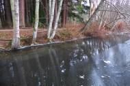 winter-reflection-padden
