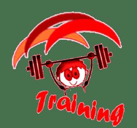 logo-training-ok-web