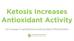 Ketosis Increases Antioxidant Activity