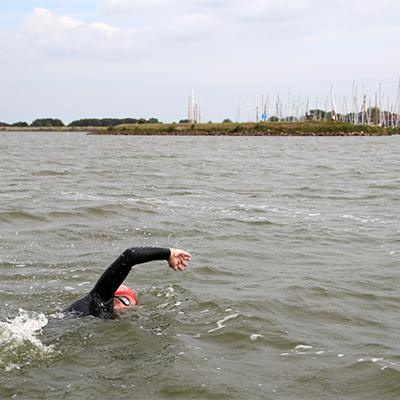 Andijk-Medemblik-Andijk-openwaterswimming.club