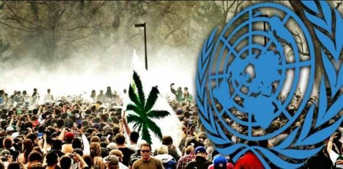 American Media Silence After UN Calls For Decriminalizing Drug Use Worldwide