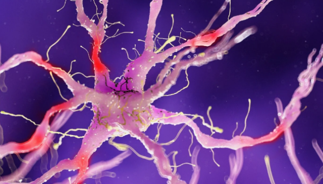 If There Was Ever a Time to Activate Your Vagus Nerve, It Is Now