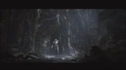Dark Souls 2 pic 16