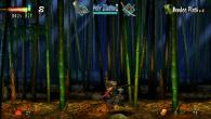 muramasa-screenshot-8