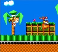 Tails - Tails' Skypatrol