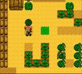 Harvest Moon 2 GBC 05