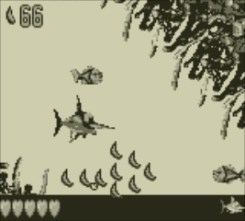 Donkey Kong Land III 03