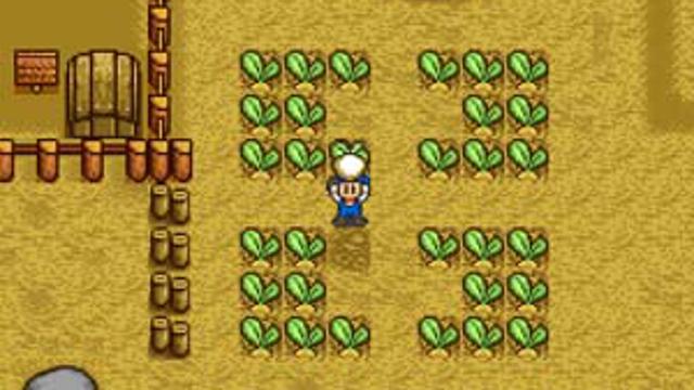 Harvest Moon Super Nintendo