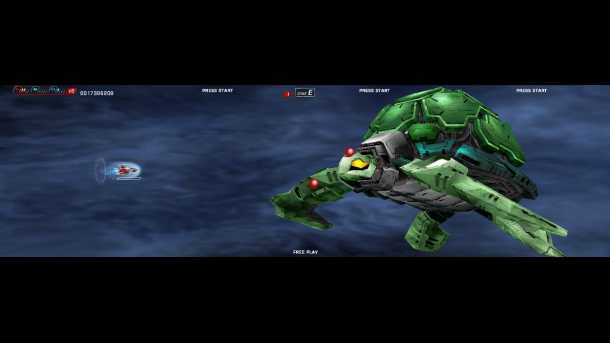 Dariusburst | Turtle