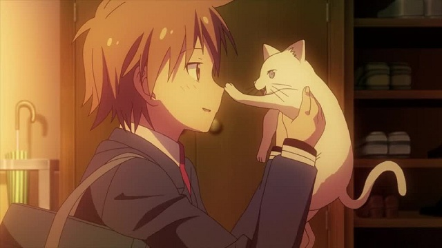 The Pet Girl of Sakurasou