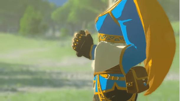 Zelda Breath of the wild | New Character