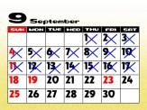 PacaPlus | Calendar