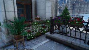 Altissia | Flowers