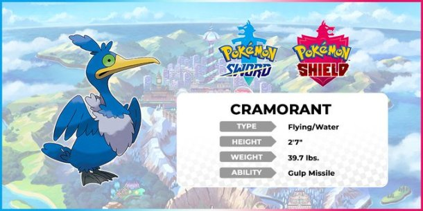 Pokemon Sword and Shield   Cramorant