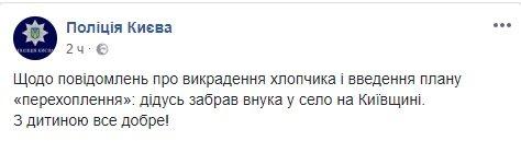 Похищенный в Киеве мальчик нашелся. Дедушка забрал внука в село, - Нацполиция 01