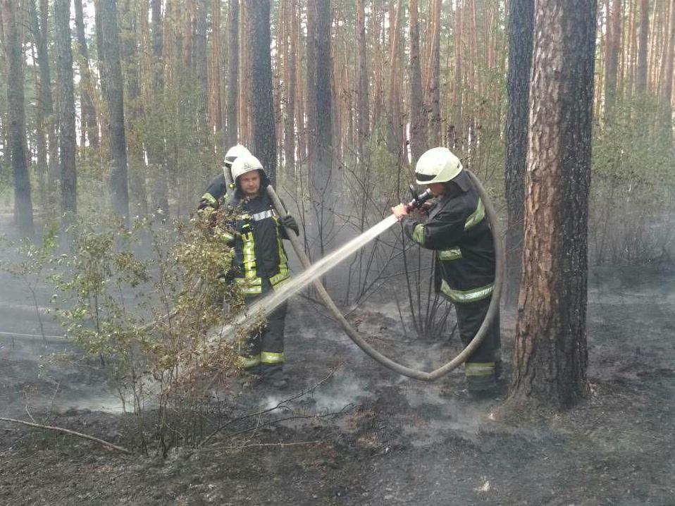В Деснянском районе Киева горит травяной настил на площади 3 га