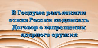В Госдуме разъяснили отказ России подписать Договор о запрещении ядерного оружия