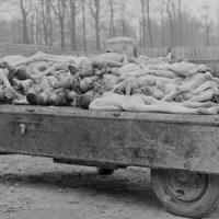 «Тонька-пулеметчица», расстрелявшая тысячи людей, пролезла в  почетные граждане города