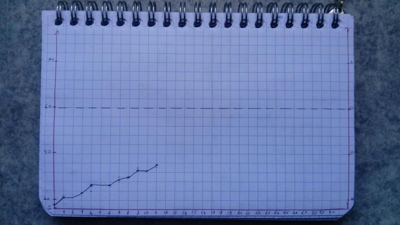 Graphique de progression du camp nanowrimo 2019.