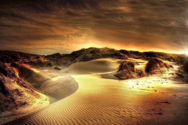 Photo de dunes de sable parsemées d'oyats, sous un ciel nuageux orangé. Le tout donne une couleur presque dorée/cuivrée à l'ensemble.
