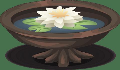Dessin d'une coupole d'eau contenant un lotus en fleur.