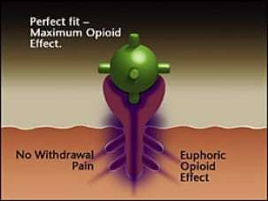how to use loperamide for opiate withdrawal