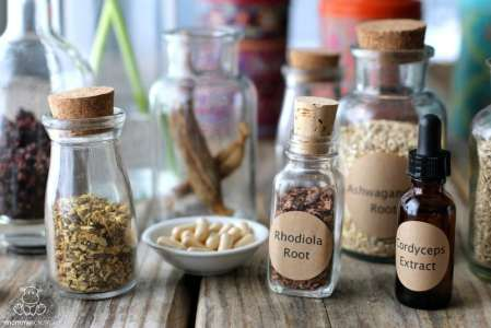 How To Use Adaptogens For Opiate Addiction Recovery