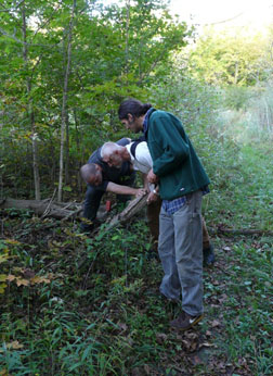 Adam Zieleman (left), Ulrich Schneppat (centre) and Vanya Rohwer (right) looking for slugs on the Bonwill Tract. Photo: Mark Andrew Conboy.
